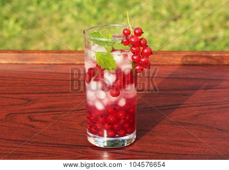 summer drink with redcurrant