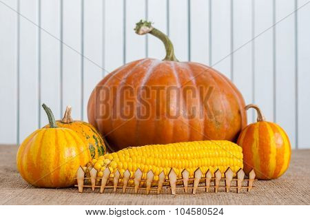 Cornucopia of Fall Pumpkins, Gourds, and Corn behind miniature or toy wooden rustic fence, light bac