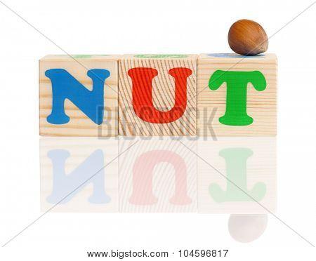 NUT word formed by wood alphabet blocks with hazelnut, isolated on white background