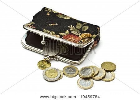 Beautiful Purse With Euro Coins