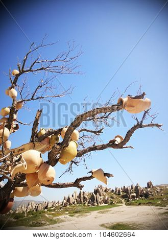 Terracotta pots on tree in Cappadocia