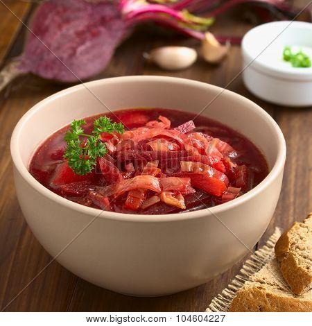 Vegetarian Borscht Soup