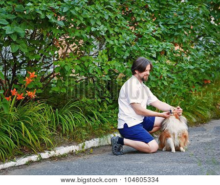 Man In The Park With His Pet Sheltie Dog Breed.
