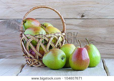 Ripe Pears Autumn Still Life