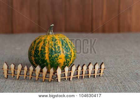 Funny pumpkin behind miniature or toy wooden rustic fence. With empty space for text. Agriculture Co