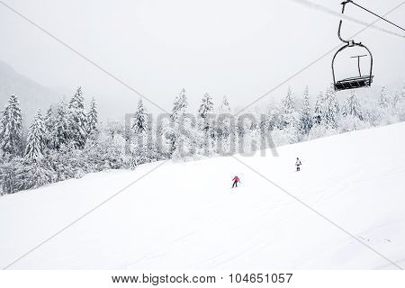 KOLASIN, MONTENEGRO - FEBRUARY 1: Ski slopes among coniferous forest in 'Kolasin 1450' mountain ski