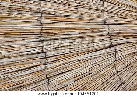 Natural Bamboo Curtain  Background Perspective