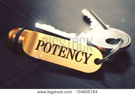 Potency - Bunch of Keys with Text on Golden Keychain.