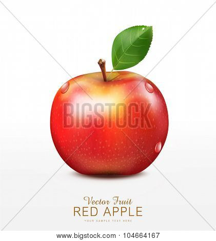 vector ruddy apple with green leaf isolated on a white background