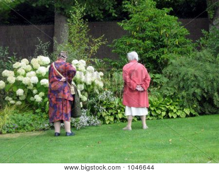 Elderly Women In Garden