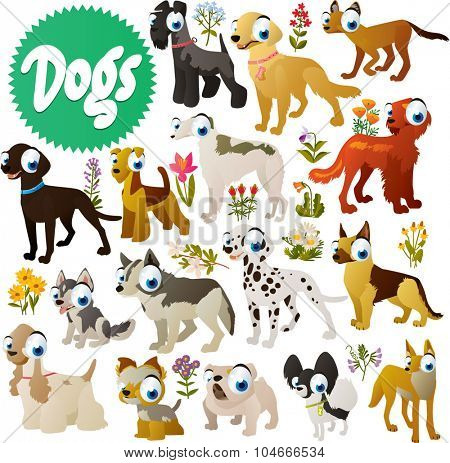 simple cute dog breeds cartoon images: carry blue, retriever, setter, labrador, borzoi, airedale, dalmatian, husky, cocker, spaniel, yorkshire, terrier, shepherd, spitz, bulldog, dingo