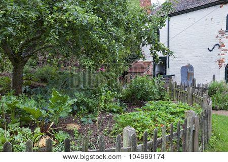 Toll House Vegetable Garden
