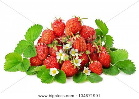 strawberry isolated on a white background
