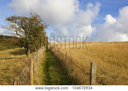Rugged Public Footpath