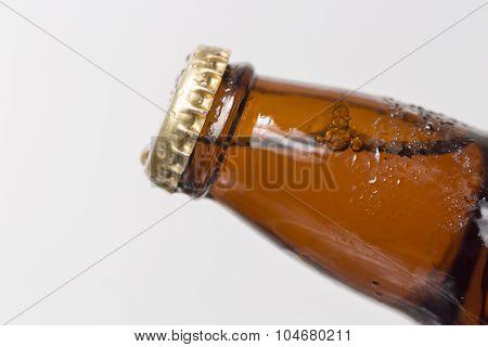 Unopened Beer Bottle