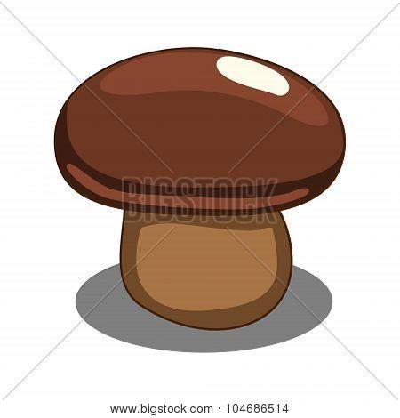 Edible mushroom vector illustration