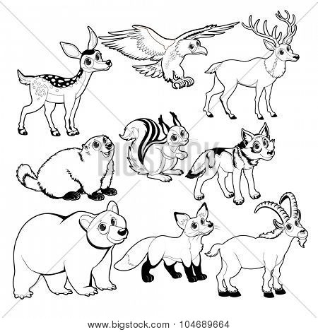 Wood and mountain animals in Black and white. Vector isolated characters.
