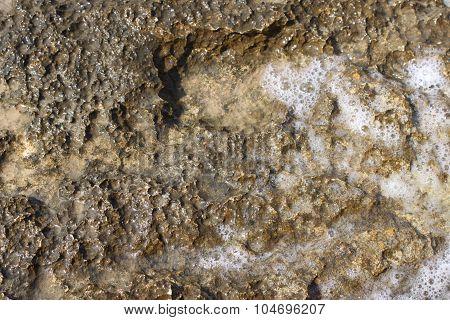 Interesting rock with foamy sea water