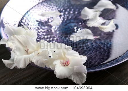 Flower petals in plate with water closeup