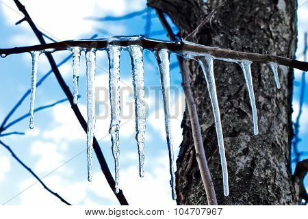 Icicles on blue sky background