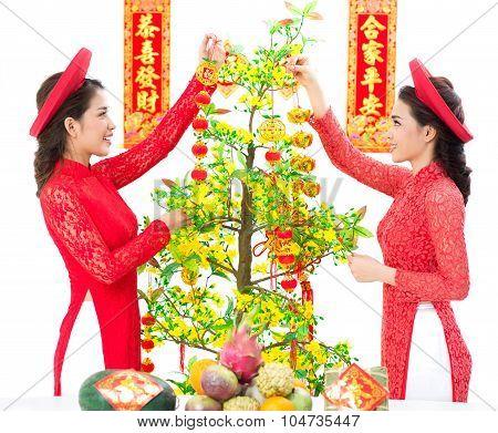 Hoa Mai Decoration