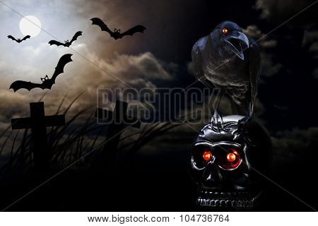 Crow Stand On Skull