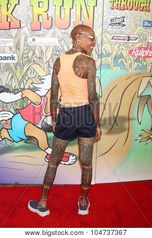 LOS ANGELES - OCT 9:  Debra Wilson at the Celebrities Salute the Military at Corn Maze at the Big Horse Feed and Mercantile on October 9, 2015 in Temecula, CA