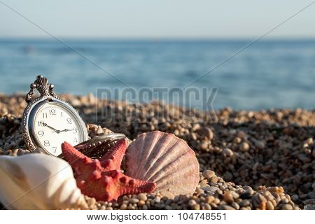 Pocket Watch With Tarfish And Shells On The Sand By The Sea Background.