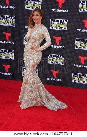 LOS ANGELES - OCT 8:  Chiqui Baby at the Latin American Music Awards at the Dolby Theater on October 8, 2015 in Los Angeles, CA