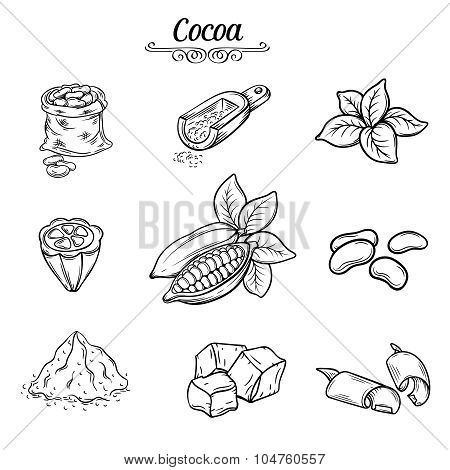 set decorative cocoa chocolate