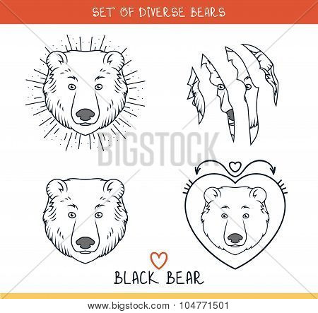 Black bear. Set isolated face, heads bear in lines. Hipster