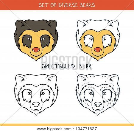 Spectacled bear. Set isolated face, heads bear in lines