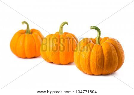 Row of three small pumpkins, isolated on white background