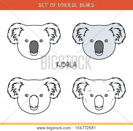 Koala bear. Set isolated face, heads bear in color, lines