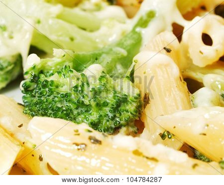 Pasta Collection - Macaroni With Broccoli