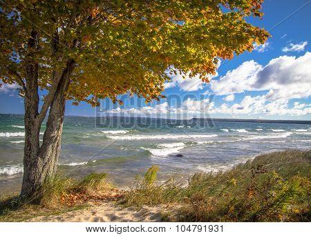 Lake Superior Autumn