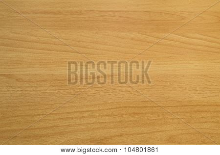 Background Texture Of Beech