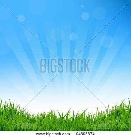 Blue Sunburst And Grass Background With Gradient Mesh, Vector Illustration