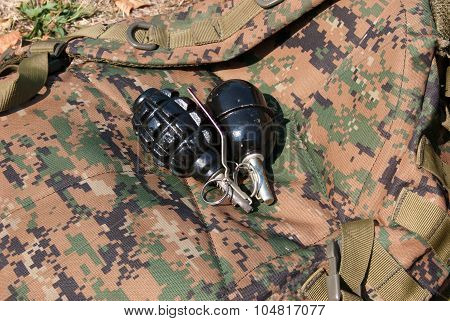 Man holding a hand grenade in his hand