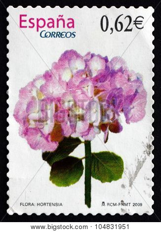 Postage Stamp Spain 2009 Hortensia, Flowering Plant