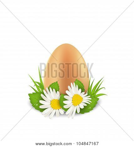 Traditional Easter egg with flowers camomiles and grass, copy sp