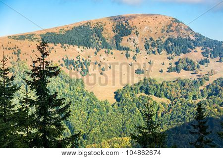 Beginning Of Autumn In The Greater Fatra National Park