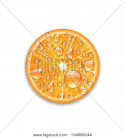Photo Realistic Slice of Orange