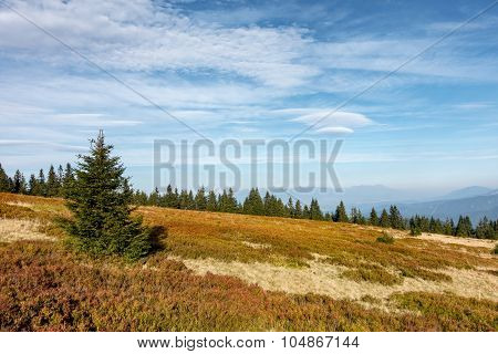 Mountain Countryside At End Of Summer