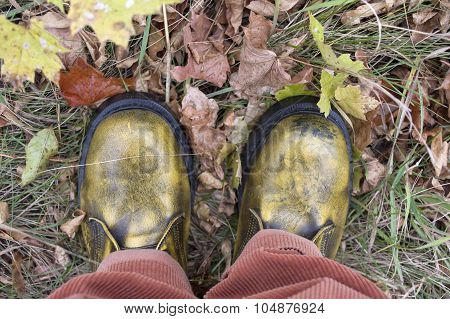 Yellow Shoes And Yellow Leaves