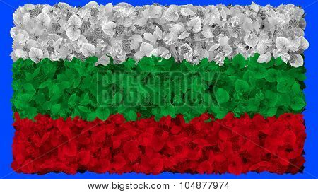 Flag of Bulgaria, Bulgarian flag made from leaves