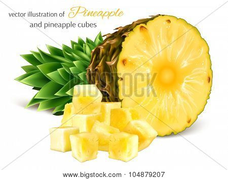 Pineapple and pineapple cubes. Vector illustration.