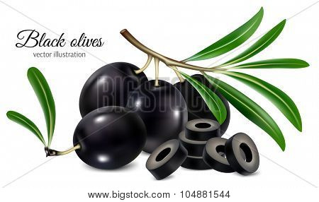 Black olives on a twig with leaves and olives slices. Vector illustration.