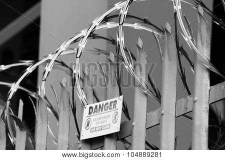 Razor wire on top of fence