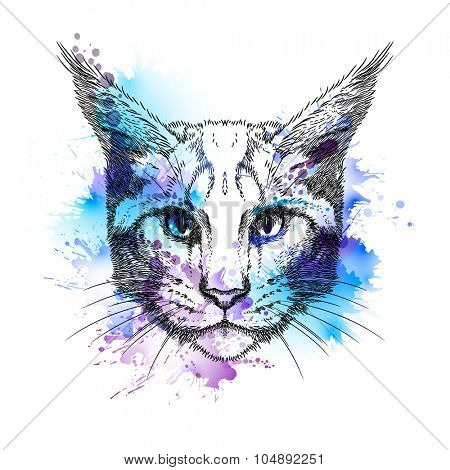 Hand Drawn stylized portrait of cat face with blots